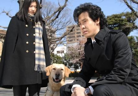 犬訓練士(ドッグトレーナー)