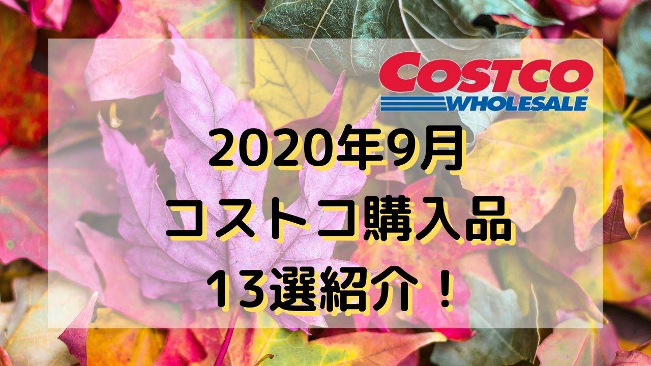 【2020年9月】コストコ購入品13選紹介【リピートと初めての商品】